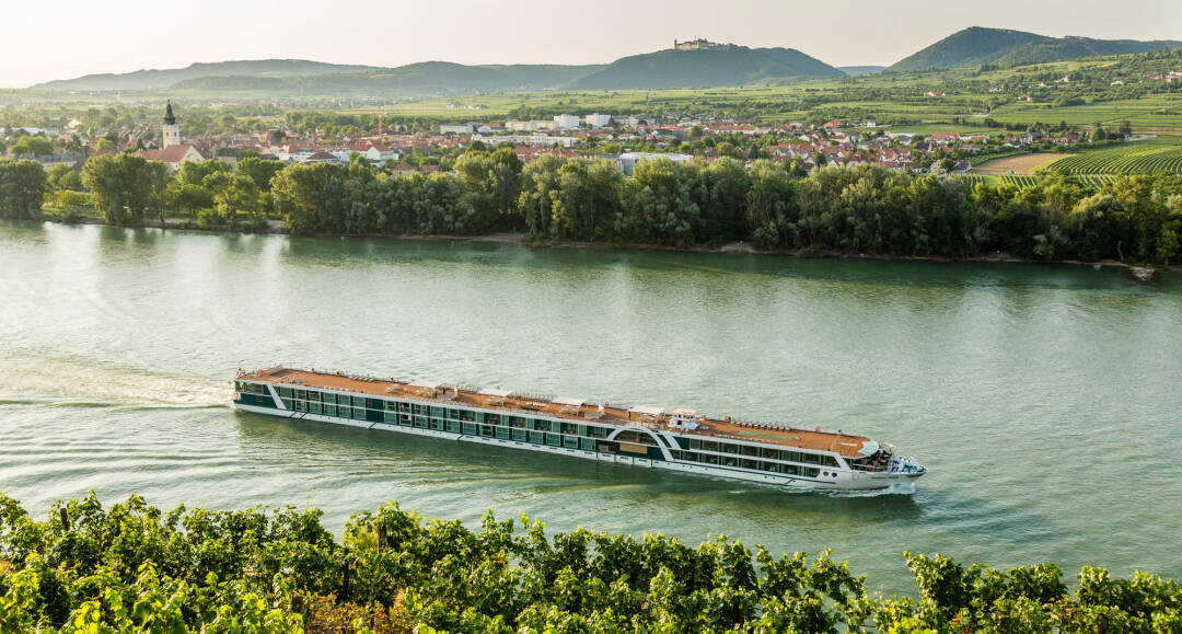 Vierlandencruise Bergvaart naar Basel in Zwitserland - Duitsland
