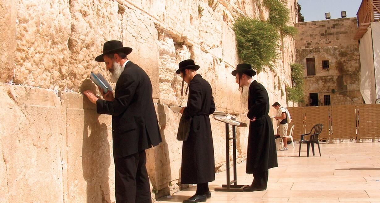 9-daagse rondreis Israël o.l.v. Ds. J.H. Lammers - IsraelGraftuin - Klaagmuur - Yad Vashem